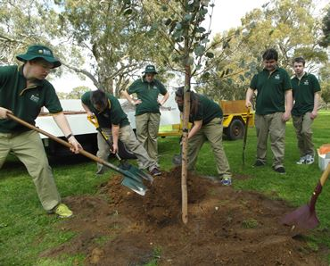 centre programs tree planting