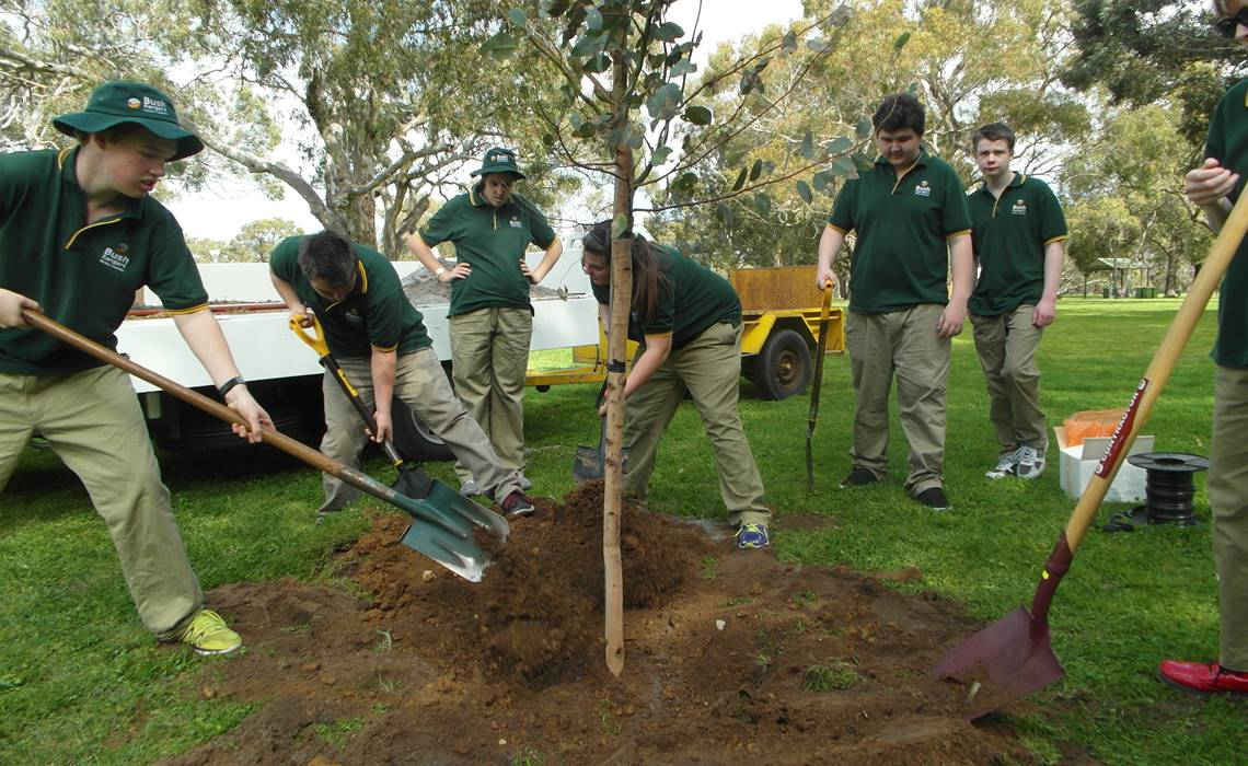 ed support students planting trees